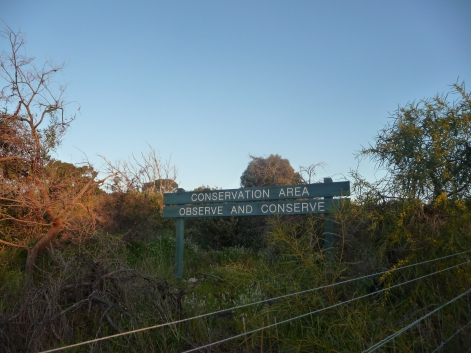 Urban Bushland And Conservation Area Perth