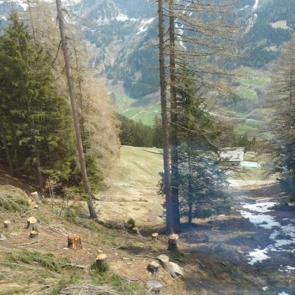 Alpine streams south side of the Bernina Pass