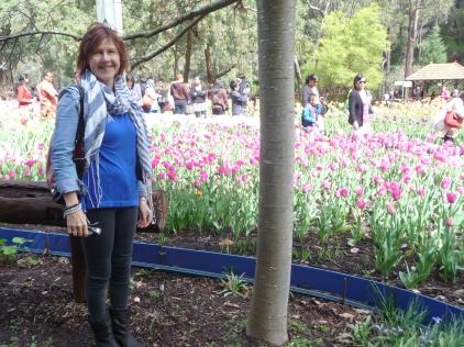Wandering around Araluen Botanic Park