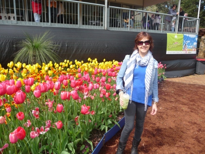 Tulips at Araluen