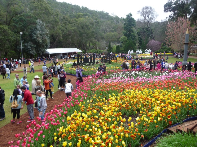 View from balcony Araluen Spring Festival