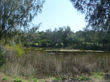 Lake in Hillarys Beach Park