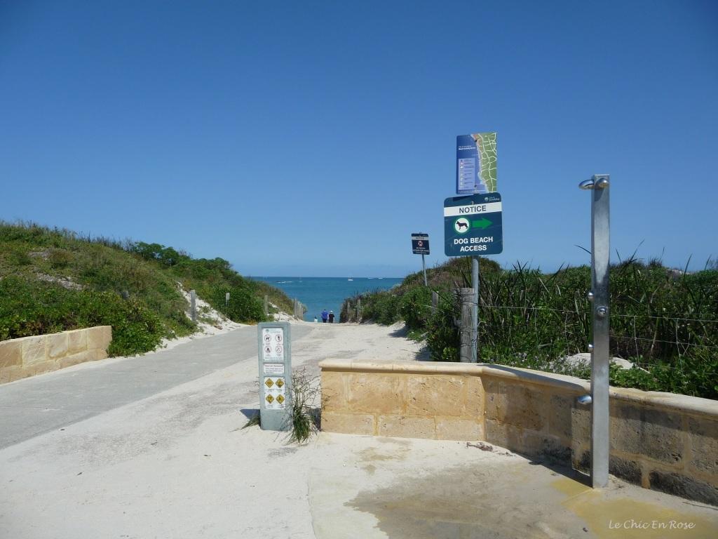 Pathway down to Hillarys Beach dog free zone!
