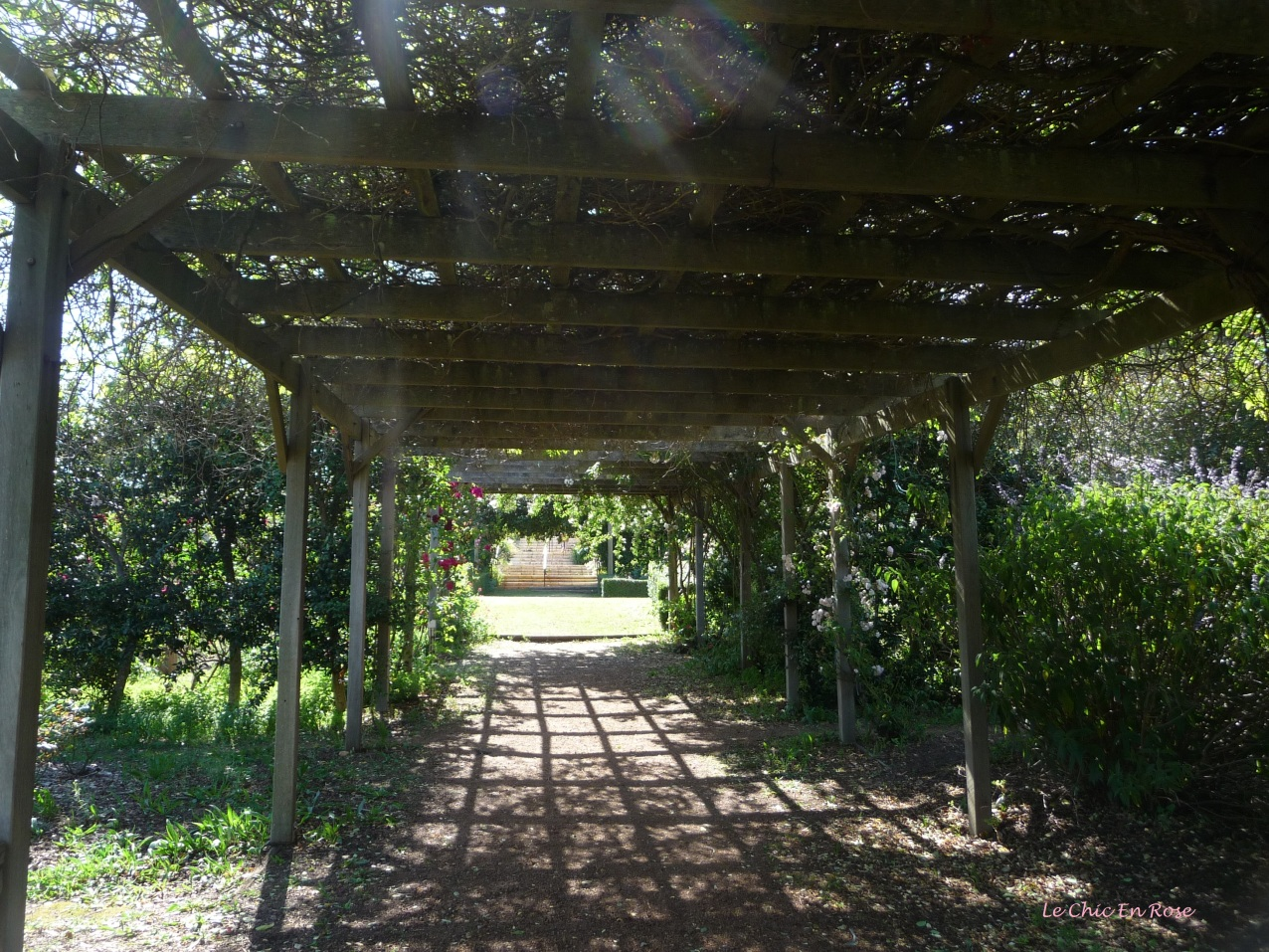 The pergola affords excellent shade from the sun
