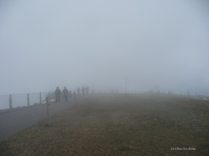 The pathway was shrouded in mist
