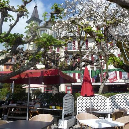 Lakeside Garden Terrace Beau Rivage Hotel Weggis