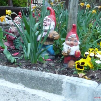 Some jolly garden gnomes Weggis!