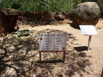 The zoo is very well signposted - these are the animals you will find in the Australian Bushwalk area