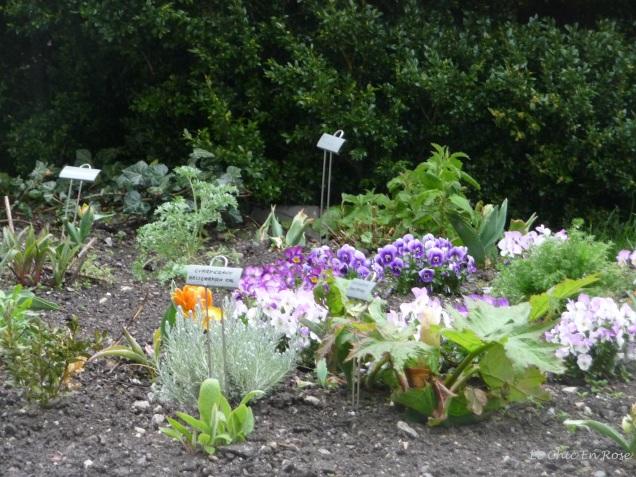 Philippine Welser's Garden at Schloss Ambras
