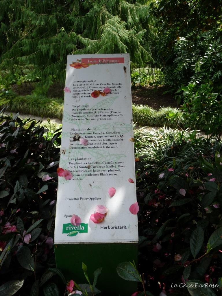 Information board on Isole di Brissago plants