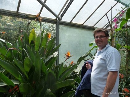 Greenhouse in the botanical gardens. We have a bird of paradise in our garden back home in Perth too!