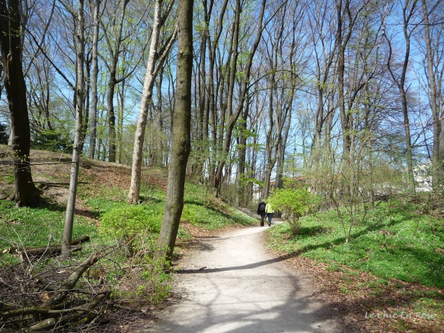 Winding pathway Finanzgarten Munich