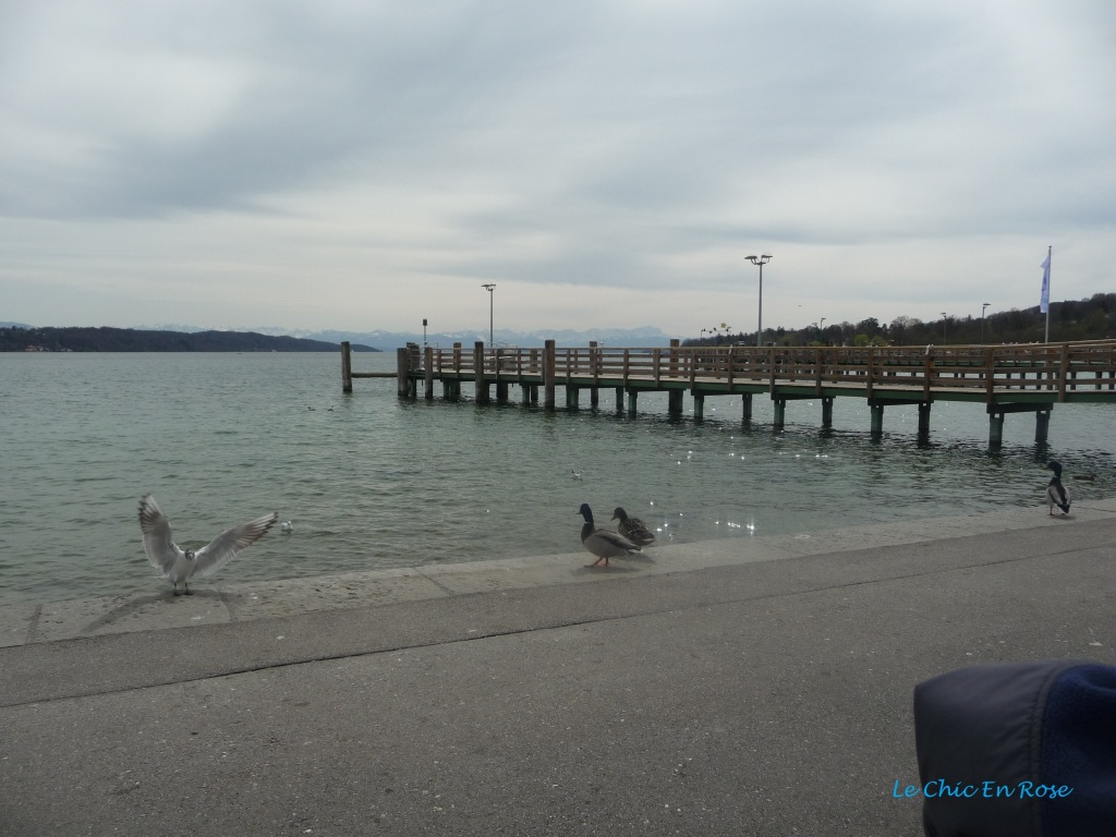 Lakeside - Starnberger See