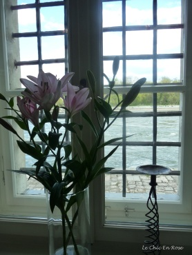 Flowers in the window - watching the Danube flow by the Wurstkuchl