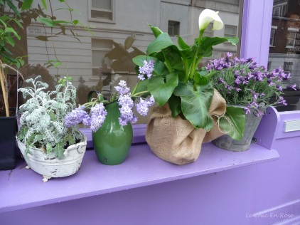 Purple upon purple - the pretty flowers on the window sill