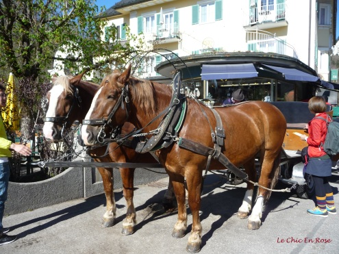 Our transport up to Neuschwanstein from Hohenschwangau in the valley below