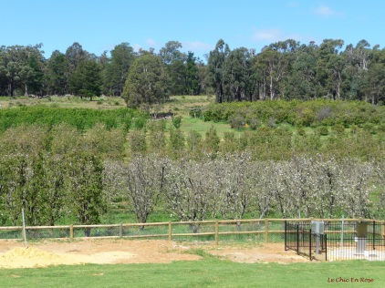 Orchards Core Cider House Pickering Brook