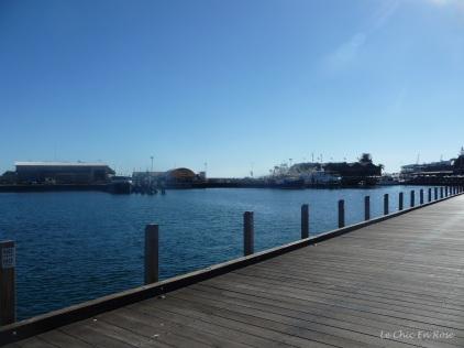 Boardwalk Fremantle Harbour