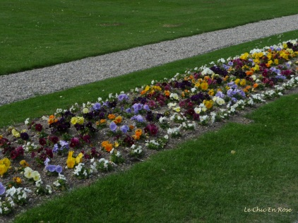 Colourful floral displays