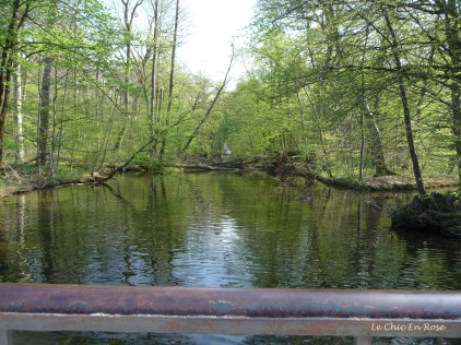 Pretty waterways and forests in the grounds of the Nymphenburg Park