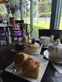 You can get plain scones too - lavender is not obligatory!