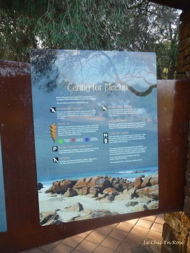 Caring for the beach eco system is very important