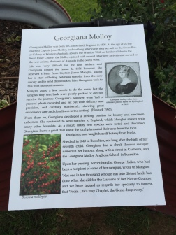 Georgiana Molloy - one of the first European settlers and a keen botanist
