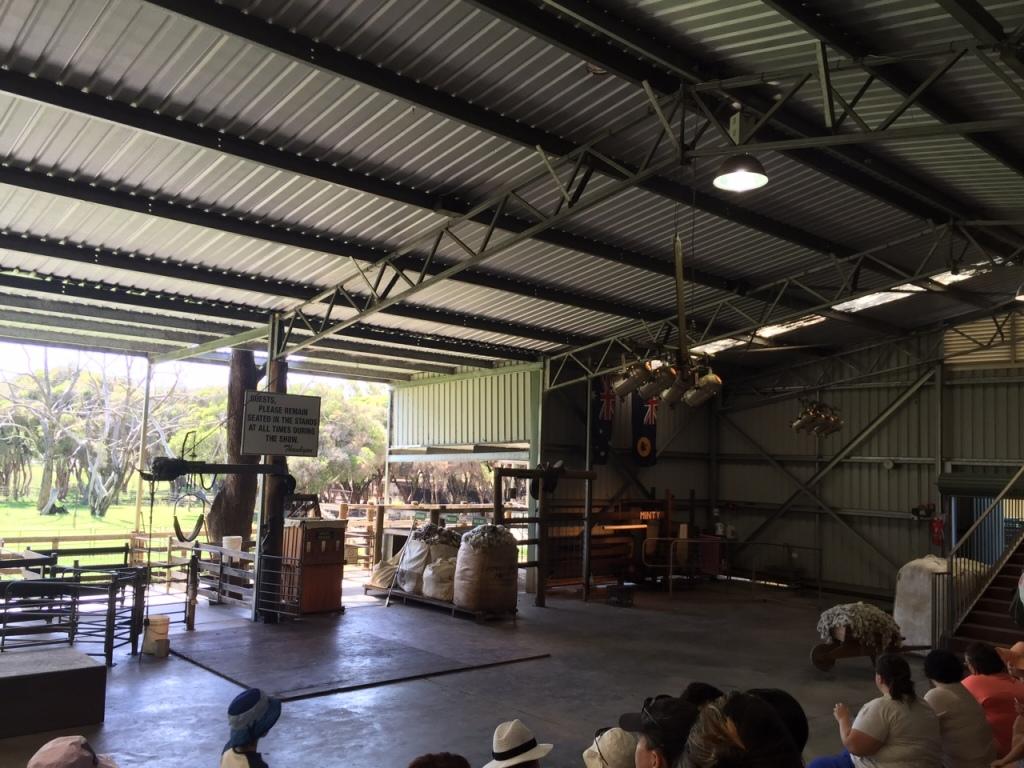Farm Show at Molly's Farm Caversham