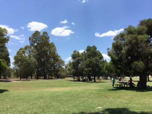 Whiteman Park Perth