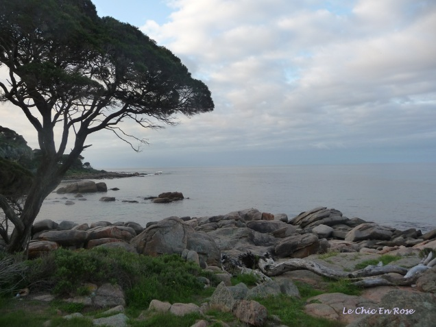 Tranquil scene at Bunker Bay looking out to the softly lapping waters of Geographe Bay