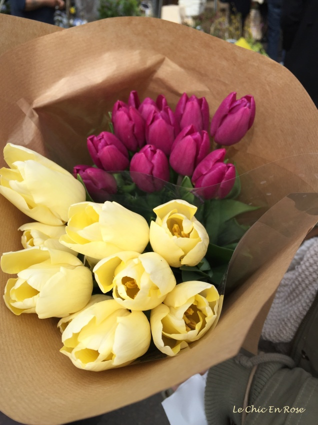 Beautiful tulips in shades of buttery cream and deep fuschia pink