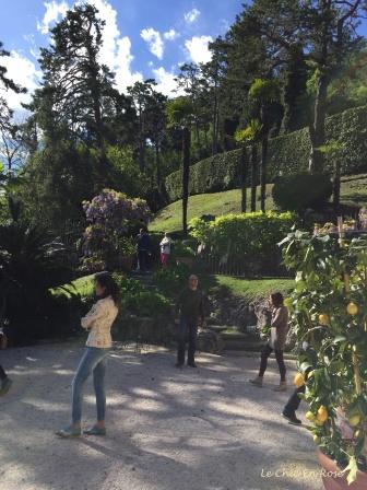 Terraced Gardens Of Villa del Balbianello