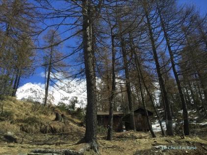 Near The Top Of The Maloja Pass Switzerland