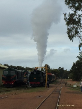 Hotham Valley Railway