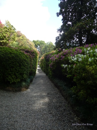 Paths Bordered By Azaleas Villa Carlotta