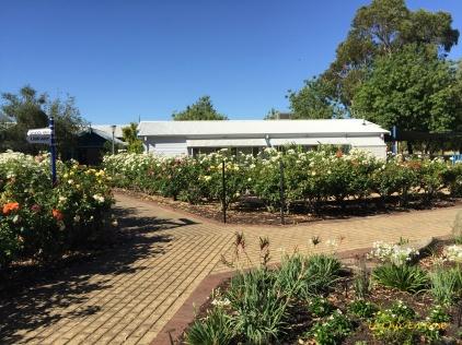 Memorial Rose Gardens Dardanup