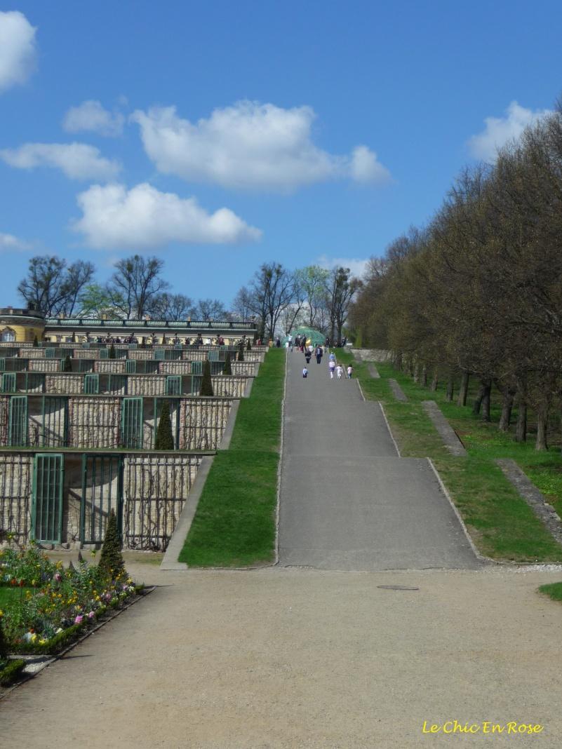 Sanssouci Park - Terraces Leading Up To The Palace