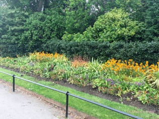 Flower beds with pretty yellows and golds