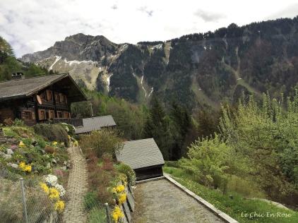 Pretty chalet and alpine gardens