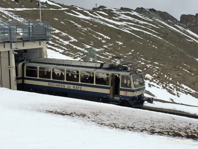 Train leaving the summit station at Rochers de Naye