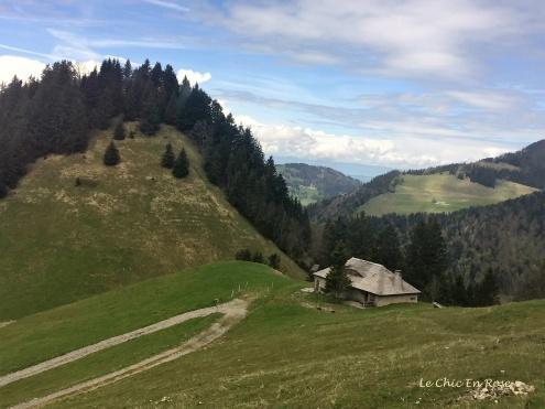 Meadows on the mountain slopes