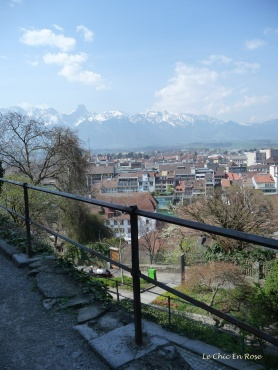 View from the top of Thun Castle