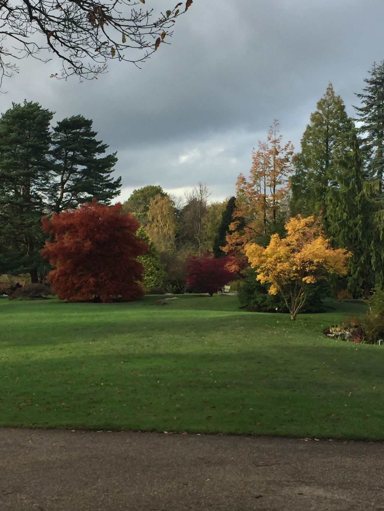 Autumn Harlow Carr Harrogate