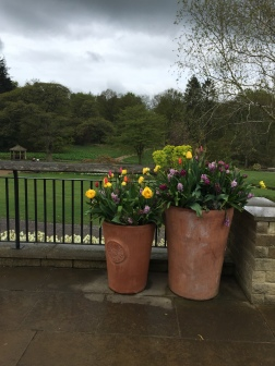 A Grey Spring Day at Harlow Carr | Le Chic En Rose