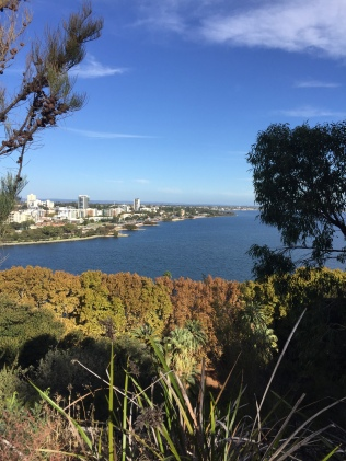 View From Mount Eliza Kings Park